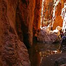 Standley Chasm by PeterDamo