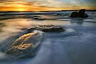 Last of the Rocks by Michael Treloar