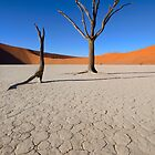 Dead Vlei - Namibia Africa by Beth  Wode