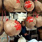 Peering Through Coconuts - Macau by JodieT