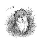 Collie Smiles by Elspeth Rose