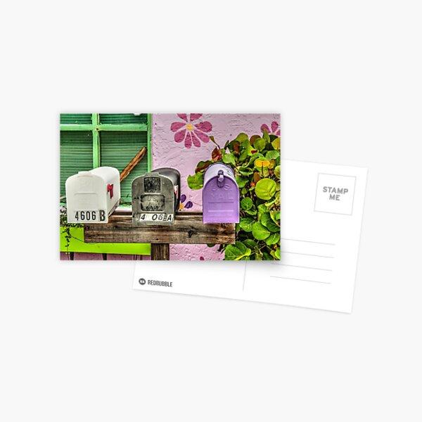 You've Got Snail Mail!  Postcard