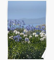 The Garden Blue Poster
