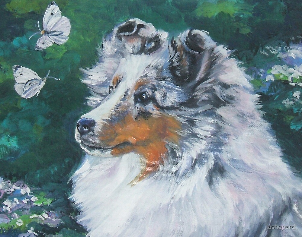 Shetland Sheepdog Fine Art Painting by lashepard