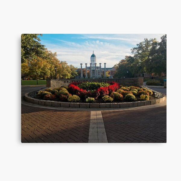University of Missouri Columns Canvas Print