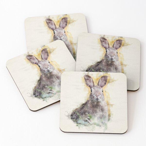 Startled Rabbit | Wildlife Watercolor Illustration Coasters (Set of 4)