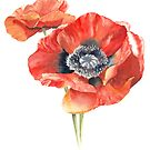 Poppy by youdesignme