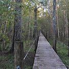 boardwalk by sowabisabi