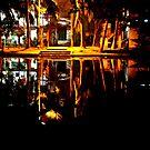 Reflection by Amitava Ray