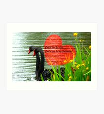 Could You Be Mine... Swans - NZ Valentines Card Art Print