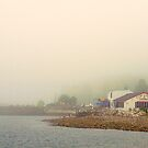 Fog, Lincolnville, Maine by fauselr