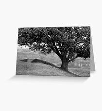 On the crest of the hill (35mm) Greeting Card