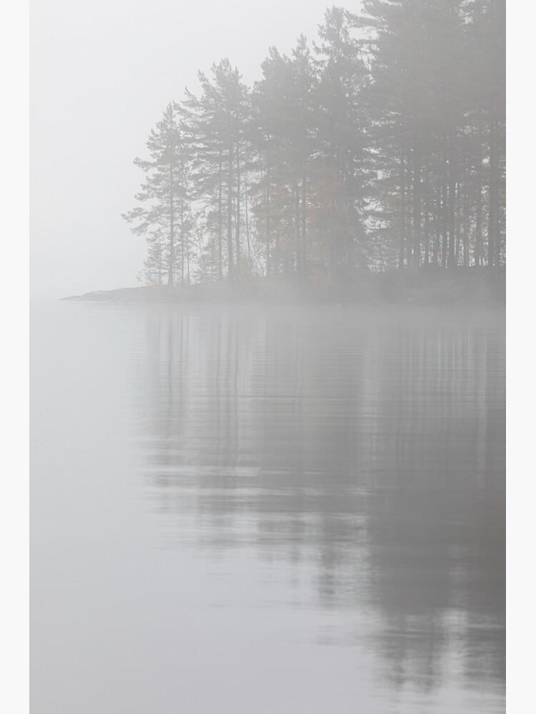 Trees reflection at lake foggy morning by Juhku