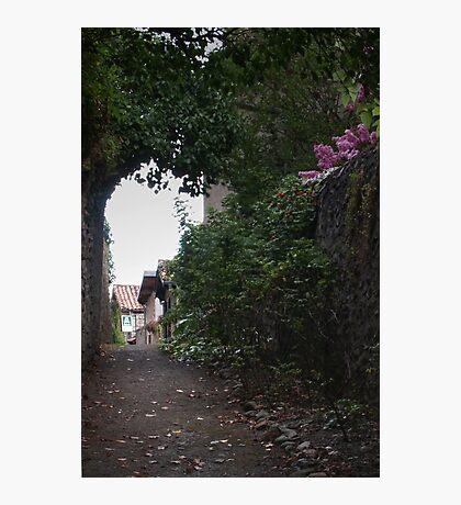 Back Street Photographic Print