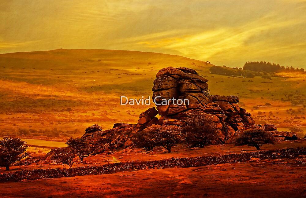 Vixen Tor, Dartmoor, UK by David Carton