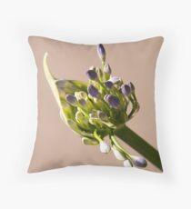 Agapanthus bud Throw Pillow