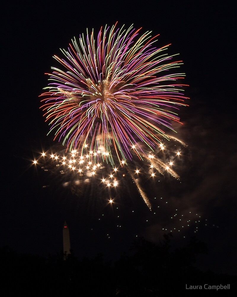 Celebration over DC by Laura Campbell