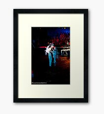 2011 FIREDANCE 93 Framed Print