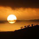 Australia Day Sunrise by Kym Howard