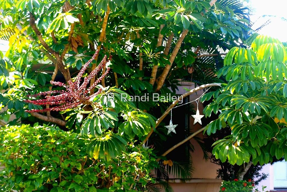 Lush foliage  by ♥⊱ B. Randi Bailey