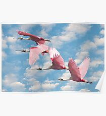 """""""Power Of Pink"""" - roseate spoonbills flying Poster"""