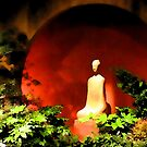 Garden of Meditation by shutterbug2010