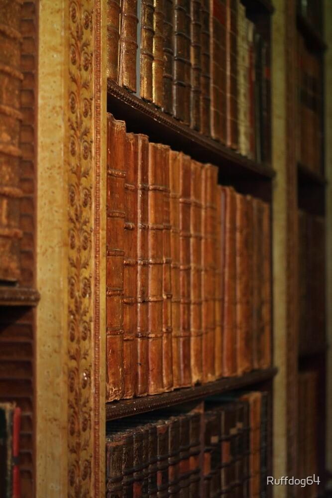 Book case by Ruffdog64