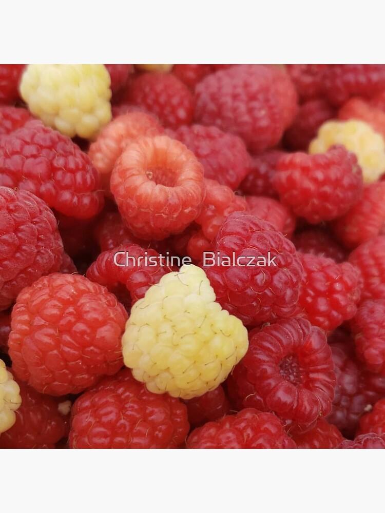Fresh Raspberries by stinewriting