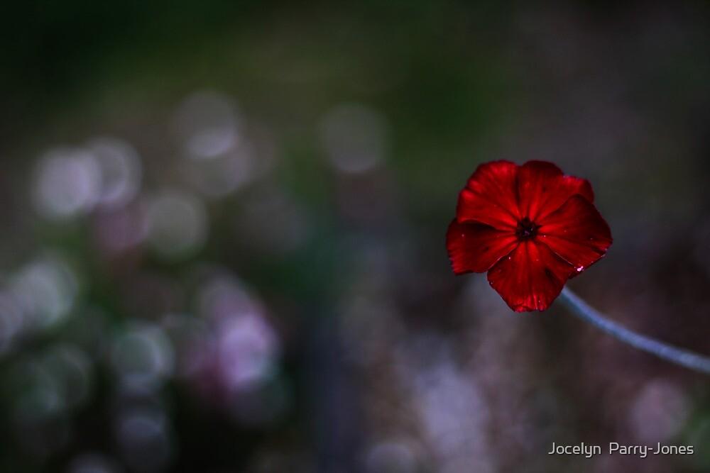 Just dropping by... by Jocelyn  Parry-Jones