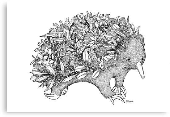 Botanical Echidna by Belladonna Raudvee