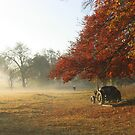 - Autumn foliage in Church Meadow, Chelsworth by Christopher Cullen