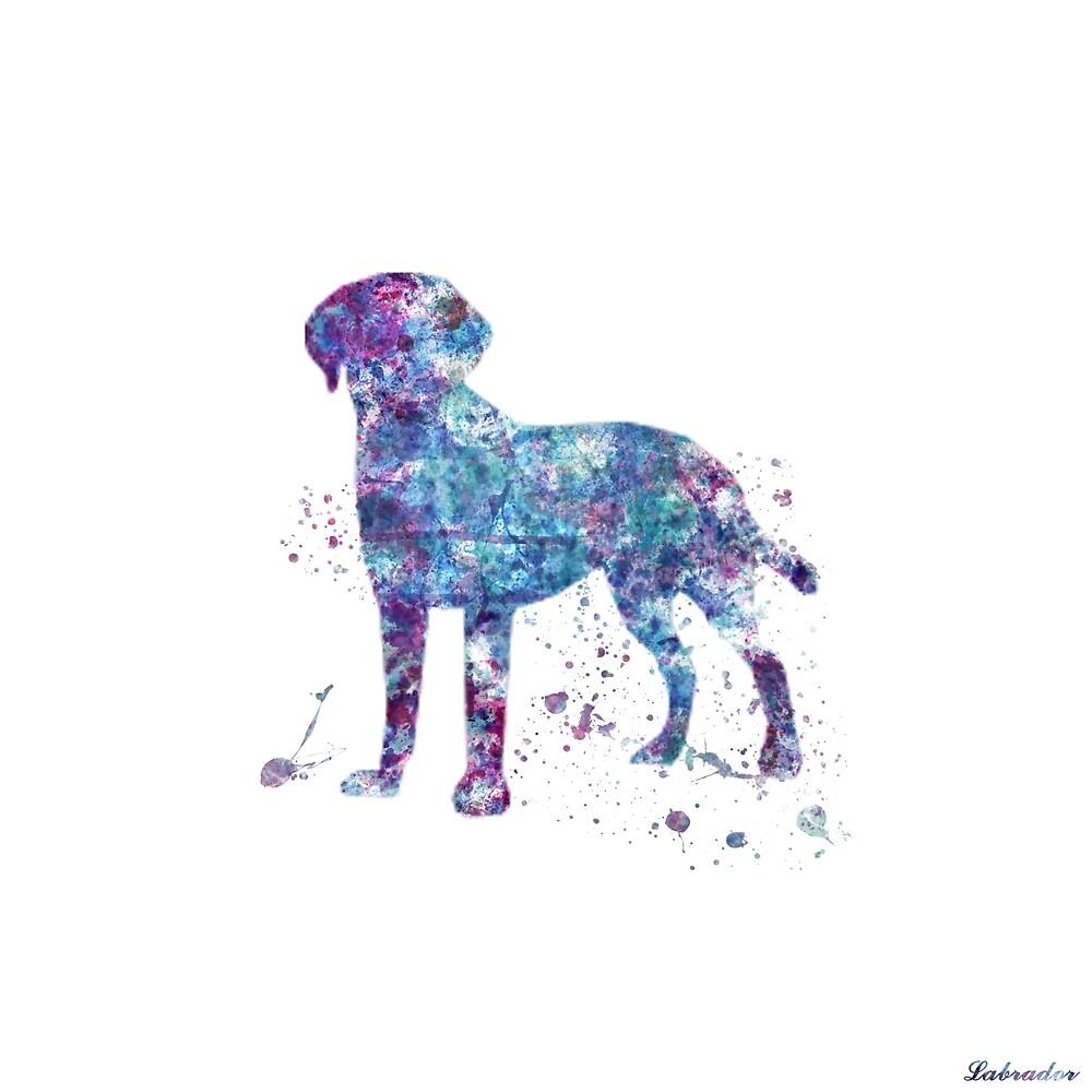 Labrador by water-colorist