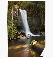 Curtis Falls, Mount Tamborine. Poster