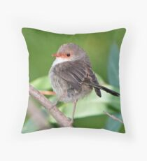 Female Fairy Wren at Laratinga Throw Pillow