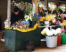 Fresh Flowers - OPorto, Portugal by T.J. Martin