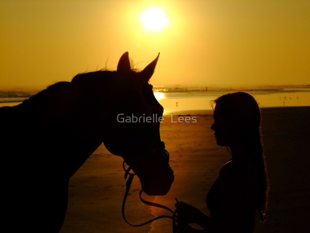 Silhouette Sunset by Gabrielle  Lees