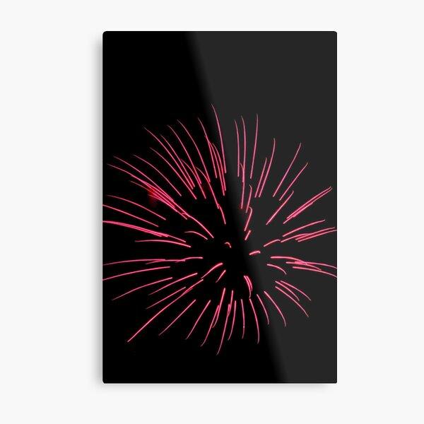 anemone Metal Print