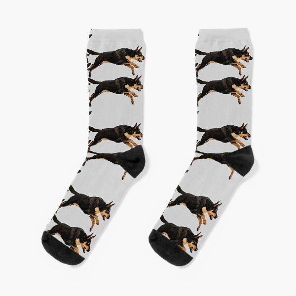 Pack of Kelpies Socks