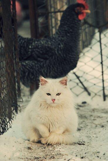 White Garfield by gindacandrei