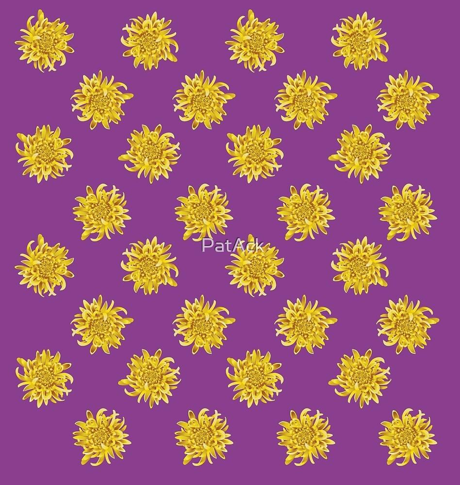Chrysanthemum by PatAck