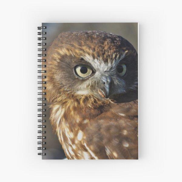 Boobook owl Spiral Notebook