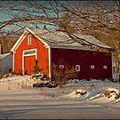 Fellows Farm #2 by Diana Nault