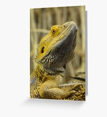 Australian Inland Bearded Dragon Reptile Greeting Card