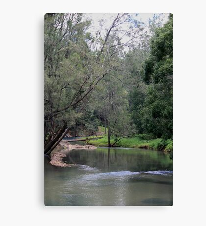 Peace Returns to Tallebudgera Creek Canvas Print