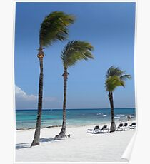 Tropical Swaying Palm Trees on White Sand Beach Scene Poster