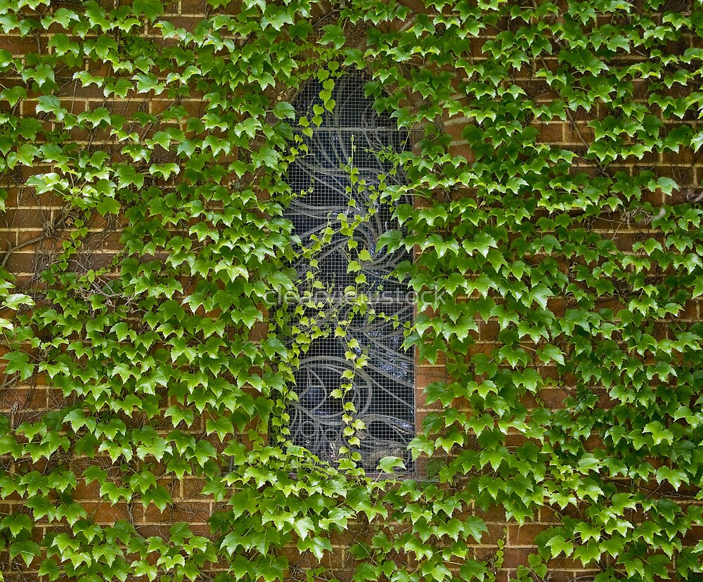 Lost Windows 1 - Gostwyck Chapel - Spring by clearviewstock