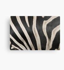 Zebra Print 2 Canvas Print