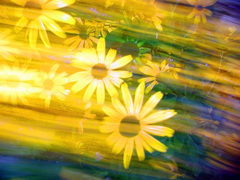 Sun Flower Rush by Dale Cherney