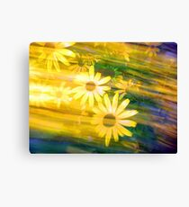 Sun Flower Rush Canvas Print