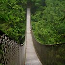 Lynn Canyon Suspension Bridge Simplified by Michael Garson
